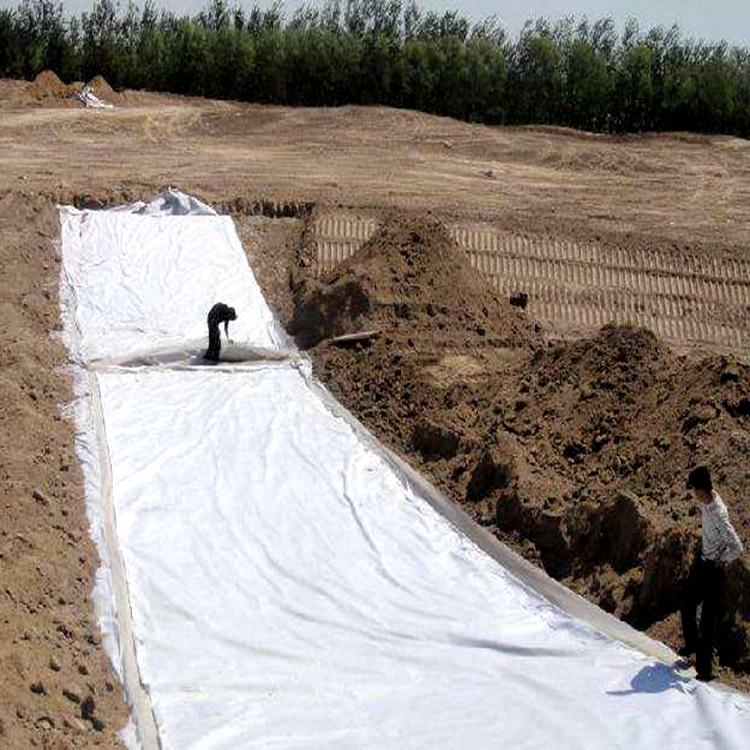 土工布,长丝土工布,软基处理土工布 厂家现货批发