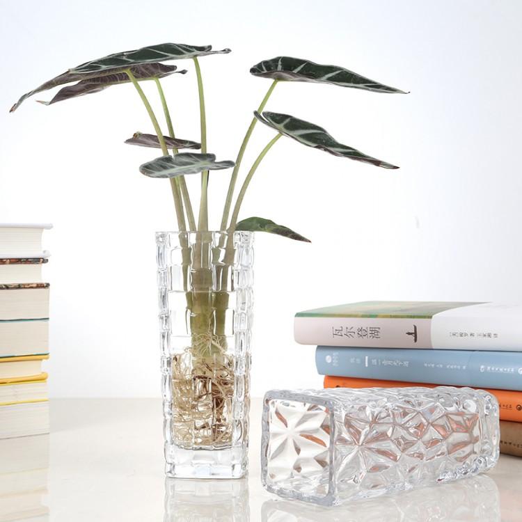 水培杯,四方花瓶,专业玻璃瓶厂家直销 量大从优