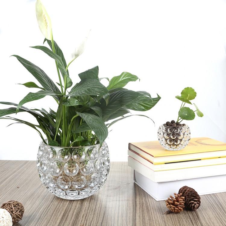 水晶球花瓶 办公桌面花瓶 专业玻璃瓶厂家直销 量大从优