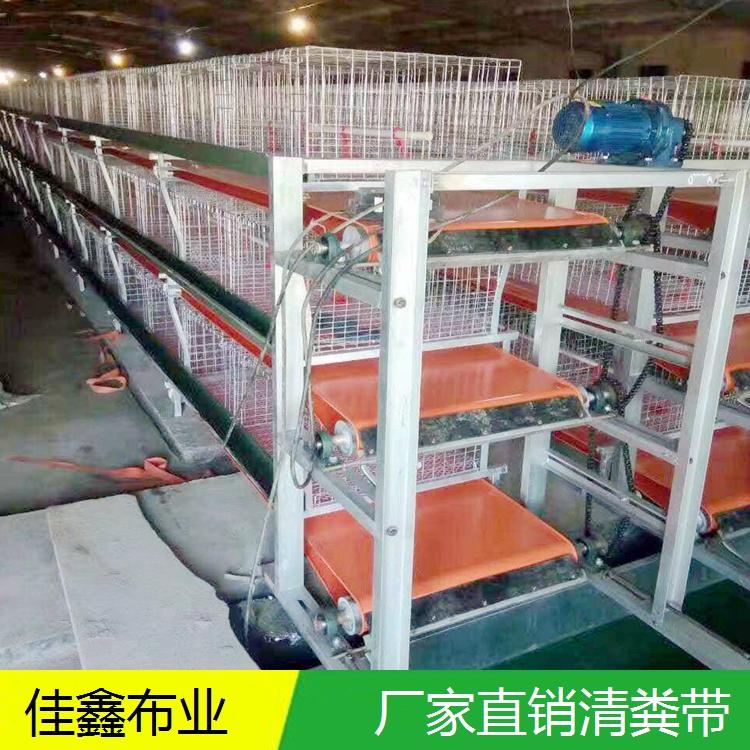 清粪带生产厂家 专业供应PVC养殖清粪带 养鸡场清粪带