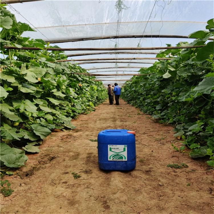利民沃野威百亩 杀虫威百亩 土壤熏蒸剂 预防各类病虫害